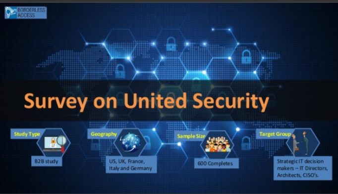 Study to understand IT security strategy applied by different companies and their decision making abilities.